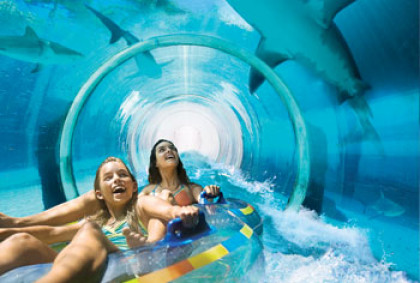 Water Slides At Aquaventure Bahamas Atlantis Paradise Island